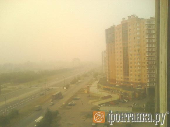 Петербург 8 августа 2010 года.