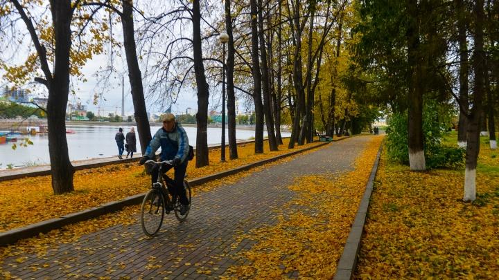 Ждем ноябрьский дождь: конец недели в Екатеринбурге будет по-весеннему теплым