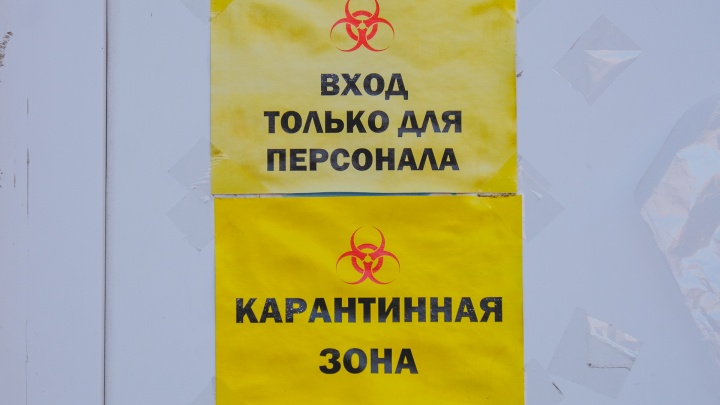 В Пермском крае болеют коронавирусом 226 врачей