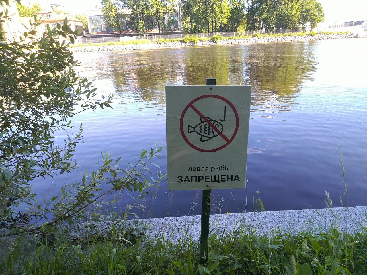 автор фото читатель «Фонтанки» Владислав