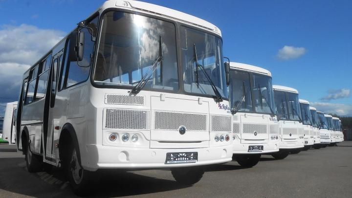 В Омской области до конца года обновят парк автобусов для поездок в районы