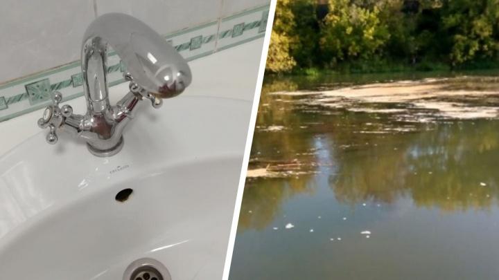 «Был сброс — течёт навоз»: в Ярославской области целый город остался без воды