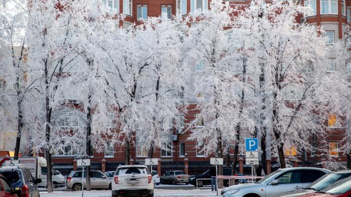 Потеплеет или станет еще холоднее? Подробный прогноз погоды на декабрь в Тюмени