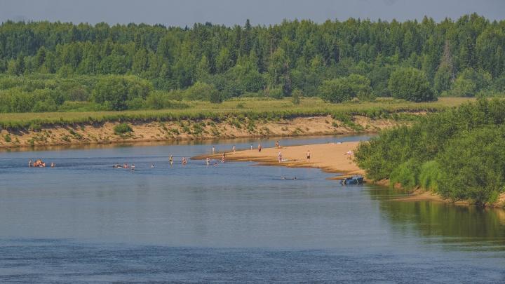 Как сильно загрязнены реки Прикамья и можно ли в них купаться? Отвечает ученый ПГНИУ