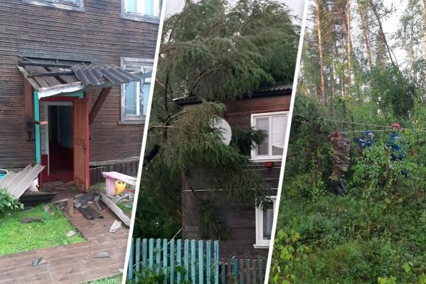 В поселение Сурское ввели режим ЧС: там ветром повалило деревья на линии электропередач и снесло шифер с крыш домов