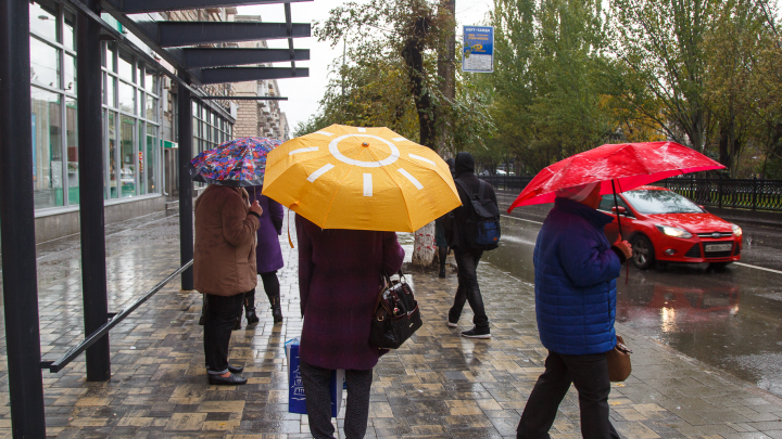 В Волгограде вслед за дождём придёт июньская жара