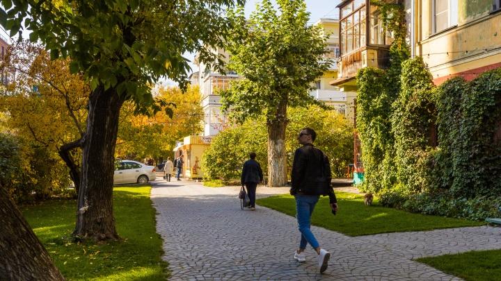 Каким в Новосибирске будет 1 Сентября — синоптики составили прогноз погоды на начало месяца