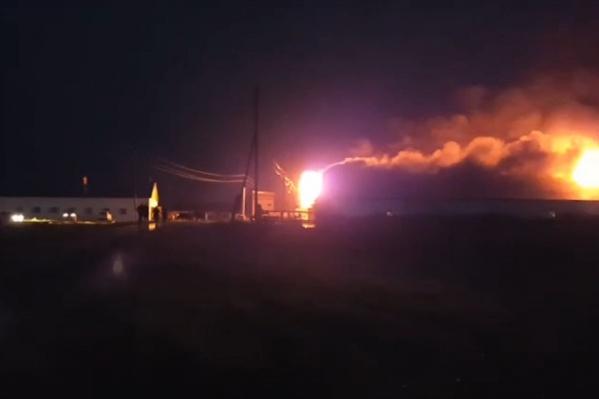 Ночью загорелось здание фермы, где находились сотни голов скота
