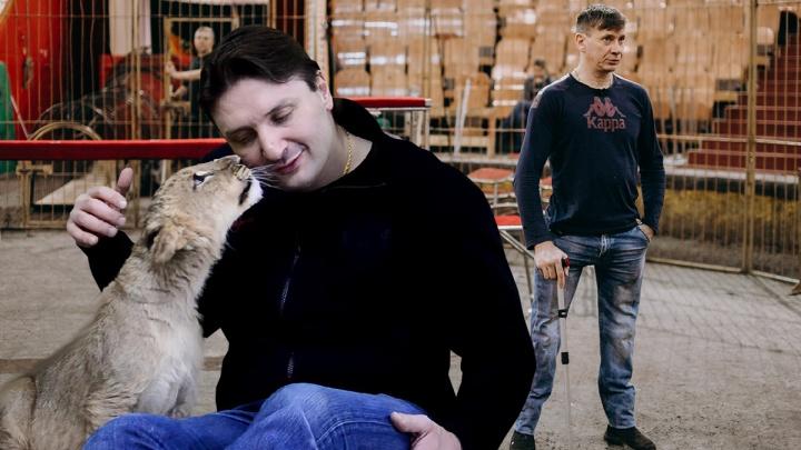 Дрессировщик на протезах и очаровательные львята: Запашный снял программу о тюменском цирке