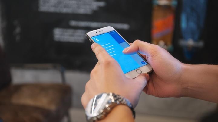 Волгоградцы смогут подключить безлимитный доступ к TikTok всего за 30 рублей