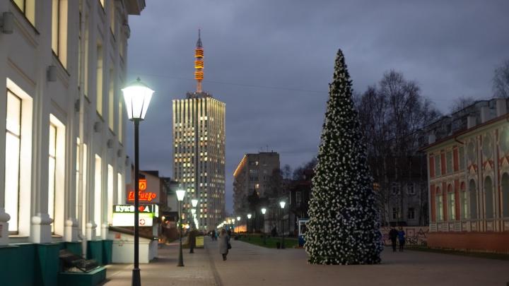 Первую новогоднюю елку установили на архангельской Чумбаровке
