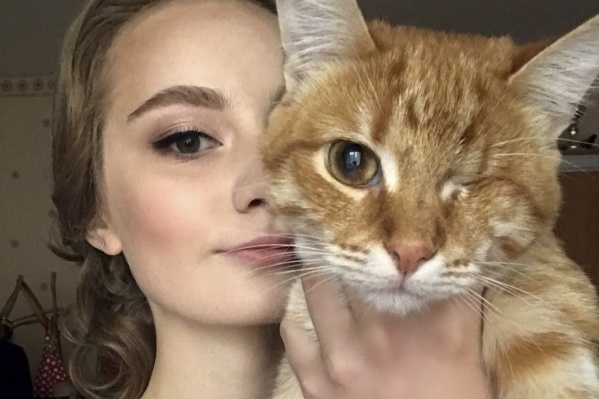 Для своих хозяев эти коты и кошки самые прекрасные