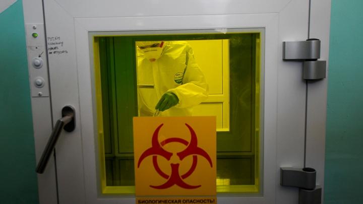 Частные лаборатории начнут тестировать на антитела к коронавирусу уже в середине мая