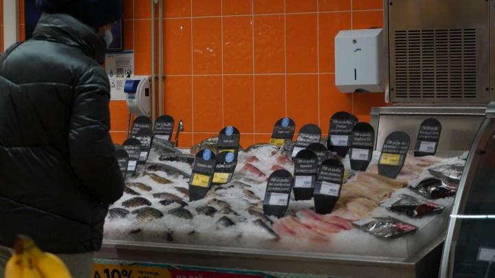 Призрачная еда: в Самаре фантомная организация поставляла продукты в регионы России