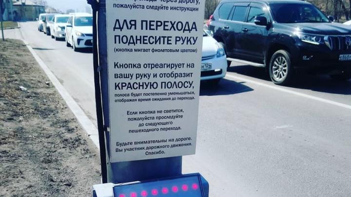 На Шахтеров появился бесконтактный светофор для пешеходов