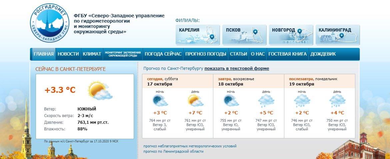 Скриншот из www.meteo.nw.ru