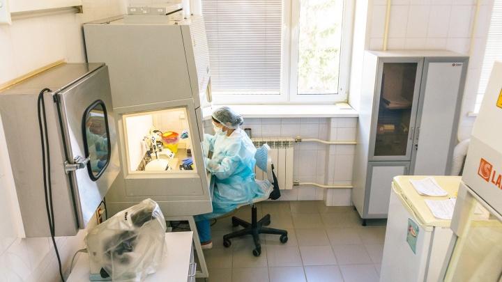 За сутки в Пермском крае коронавирус подтвердился еще у 61 человека