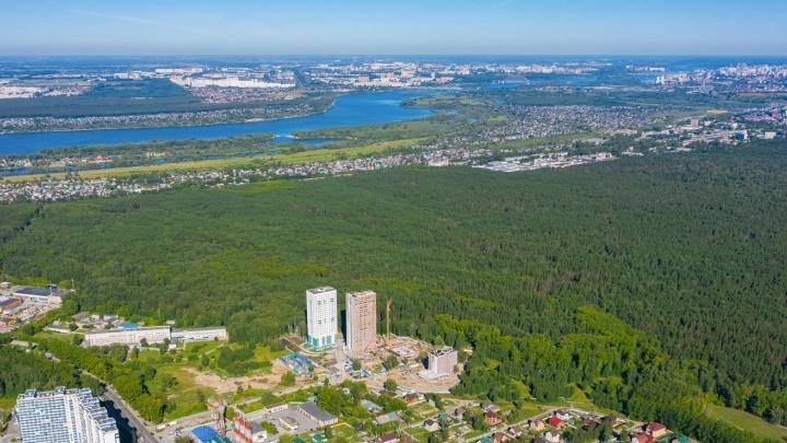 В Новосибирске появятся свои Сокольники как в Москве