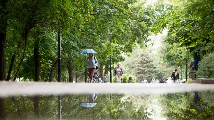 Ливни с грозой и град: в Ростове объявили штормовое предупреждение
