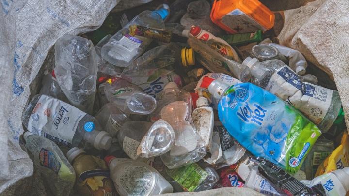 «Площадь свалок уже равна Швейцарии»: в Перми обсудили переработку мусора