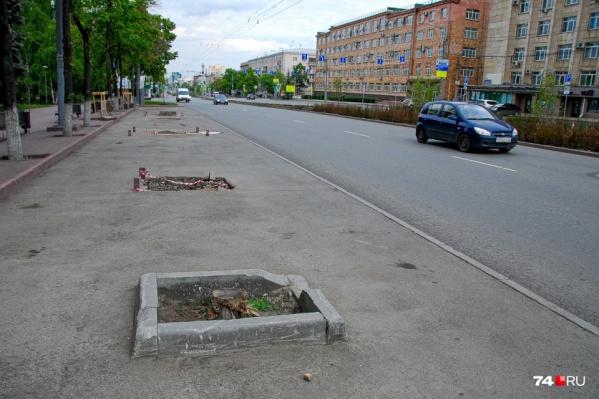 Как посчитала прокуратура, в Челябинске погибли почти 250 деревьев, высаженных в прошлом году