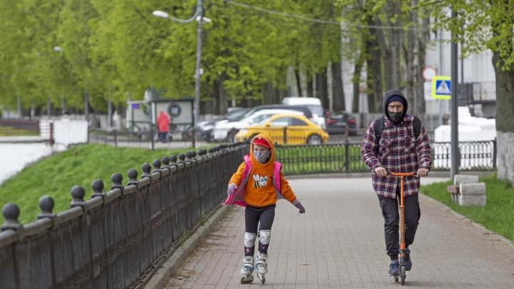 Дальше не снижается: в Ярославской области за сутки ещё 41 человек заболел коронавирусом