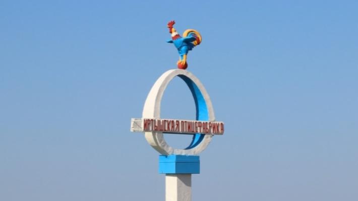 На Иртышской птицефабрике отменили карантин по птичьему гриппу