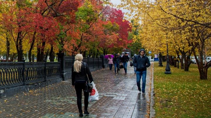 Ночью до -3 градусов: синоптики составили прогноз погоды на начало недели в Новосибирске