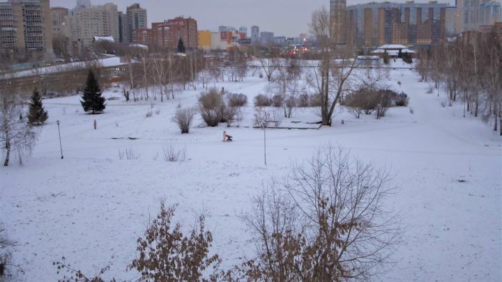 Спорный участок у «Сибирь-Хоккайдо» хотят официально сделать сквером — раньше там планировали жилую застройку