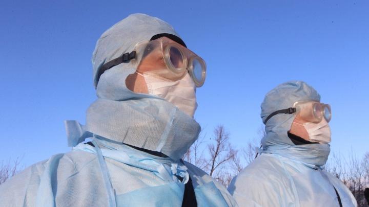 Свердловский оперштаб рассказал, сколько пациентов с коронавирусом в регионе в тяжелом состоянии