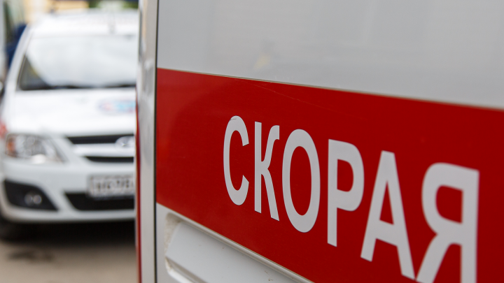 Водитель «Лады» погиб в Волгоградской области, сбив на дороге лошадь с жеребенком