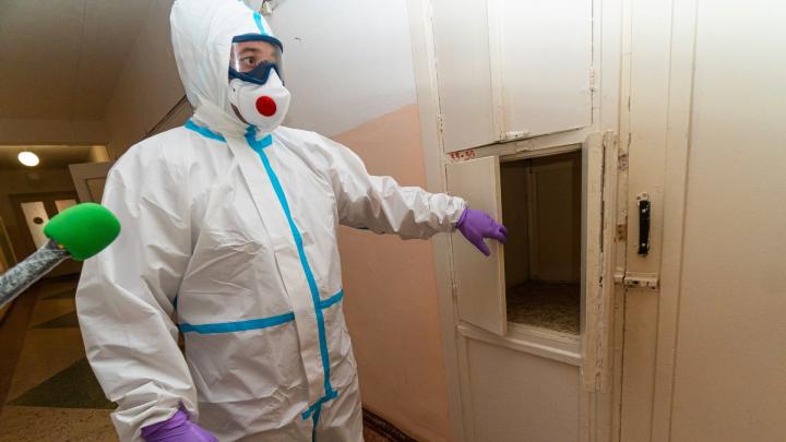 Прокуратура Прикамья проведет горячую линию для врачей, работающих с коронавирусом