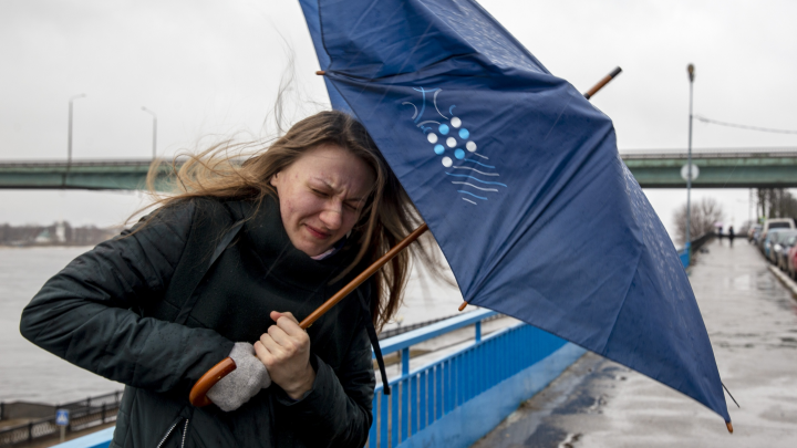 Погода изменится в ближайшие часы: МЧС дало экстренное предупреждение для Ярославской области