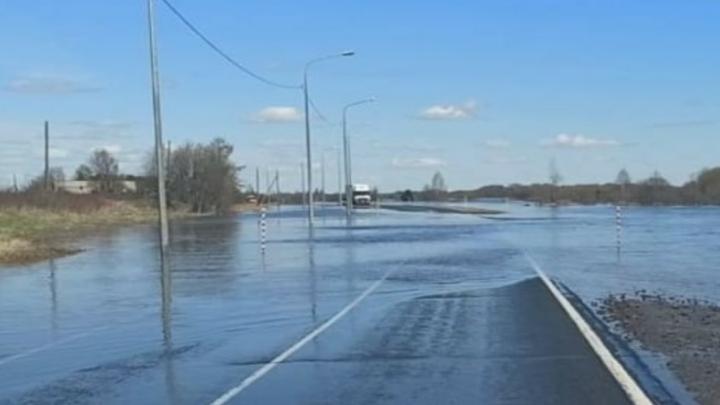 Режим ЧС вводили в Шенкурском районе из-за паводка и подтопления трассы М-8