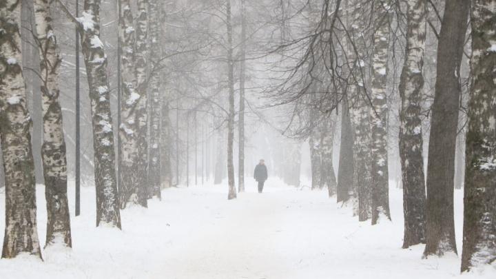 МЧС предупреждает: мокрый снег и метель в Нижнем Новгороде могут затянуться