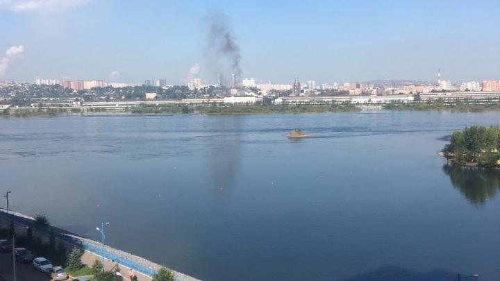 Жителей «Белых Рос» напугал гигантский столб дыма в районе регпалаты