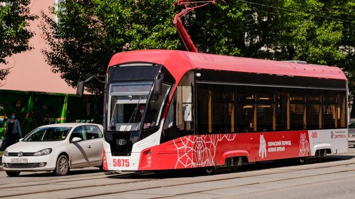 Власти Перми планируют проложить пути и запустить трамвай до Садового