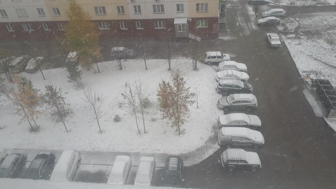 Ситуация на улице Высоцкого