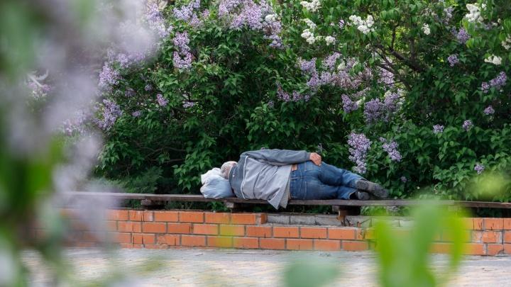 Росстат: каждый восьмой волгоградец живёт за чертой бедности