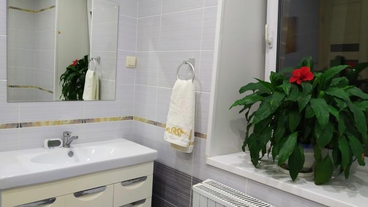 «Лежа в пенной ванне, любуемся живыми цветами и голубым небом»: история превращения кухни в санузел