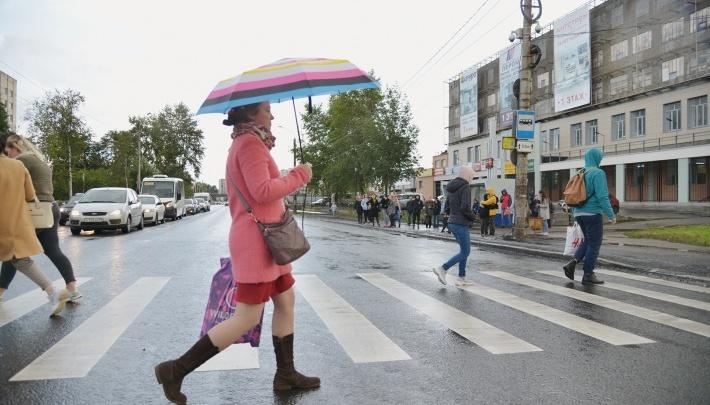 Завтра 17 сентября в Архангельске ожидаются дождь и усиление ветра