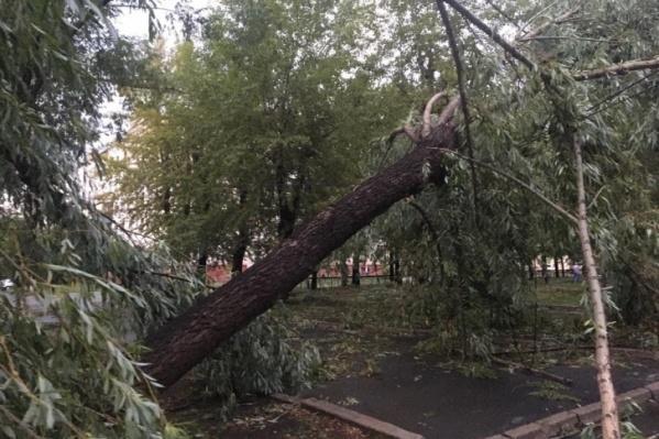 На прошлой неделе на Челябинск обрушился жестокий шторм