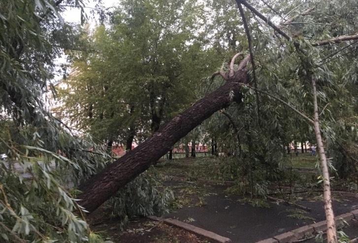 Метеорологи установили скорость ветра, который разнёс Металлургический район Челябинска