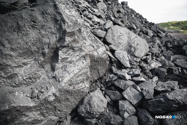 Собственники предприятия планировали начать добывать уголь недалеко от Лесной Поляны в 2023 году
