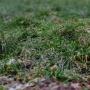 Будет еще холоднее. МЧС Прикамья предупреждает об ухудшении погоды