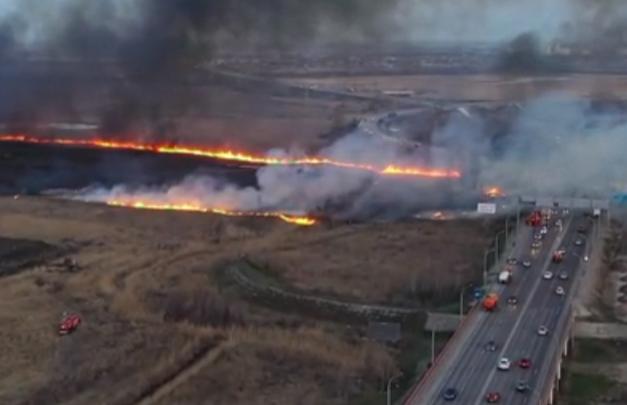 Пожар на левом берегу Дона сняли с дрона. Публикуем видео