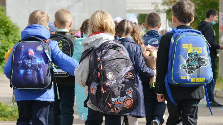 184 школьника из Архангельской области заразились коронавирусом с начала учебного года