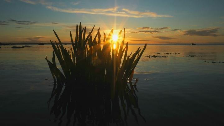 Спокойствие Соловецкого архипелага: смотрим на красивый закат на острове Большая Муксалма