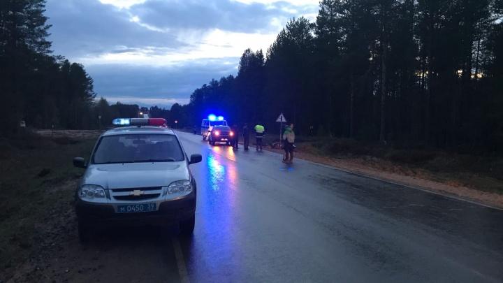 В Пинежском районе мотоциклист врезался в знак и погиб