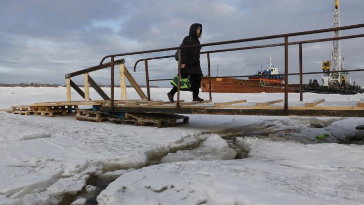 Вездеходы посреди реки и деревянные мосточки: фото с ледовой переправы между Соломбалой и Хабаркой